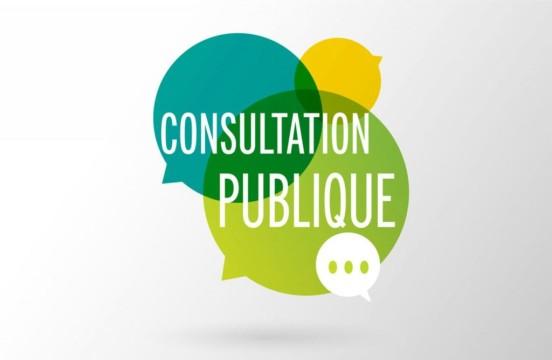 CONSULTATION PUBLIQUE : PROJET D'ARRÊTÉ RELATIF A LA CHASSE DE LA TOURTERELLE DES BOIS